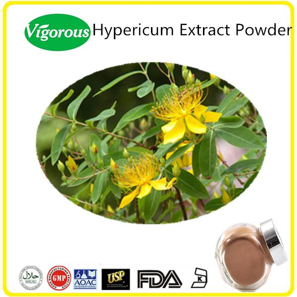 High quality Pure Natural Kosher Halal Hypericum Perforatum Extract