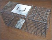 Rabbit, Hare, Cat, Skunks, Raccoon, Ferrets trap cage— Need Bait