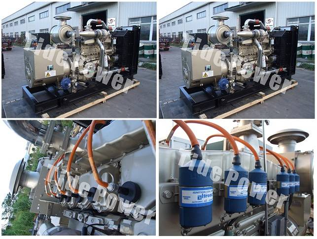 Cummins Gas Genset China Gas Generator Set