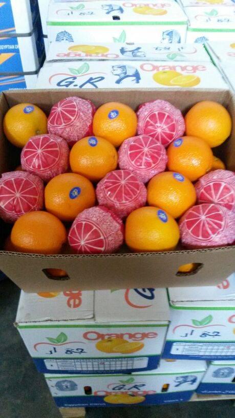 Fresh Egyptian Orange