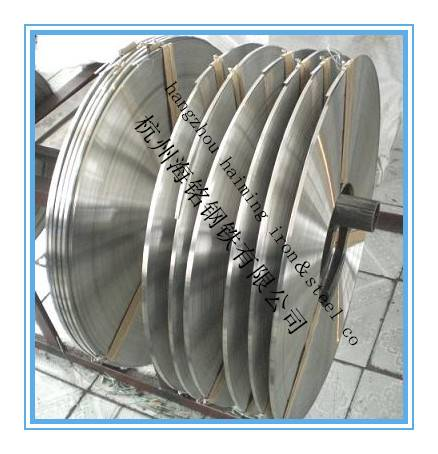 narrowest 0.5mm stainless steel strip factory