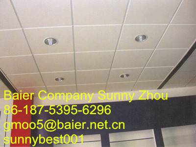Ceiling Gypsum Board of Baier