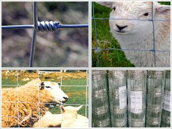 High Tensile Anti-Corrosion Galvanized Filed /Ranch Metal Wire Fence