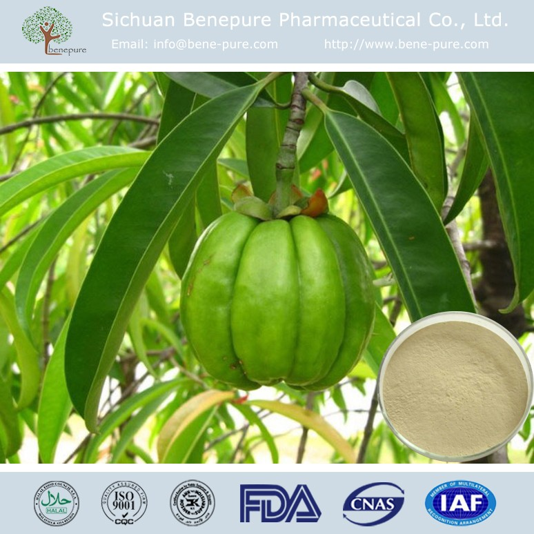 Garcinia cambogia CAS:6205-14-7 Hydroxy Citric Acid 50%, 60% HPLC,BENEPURE