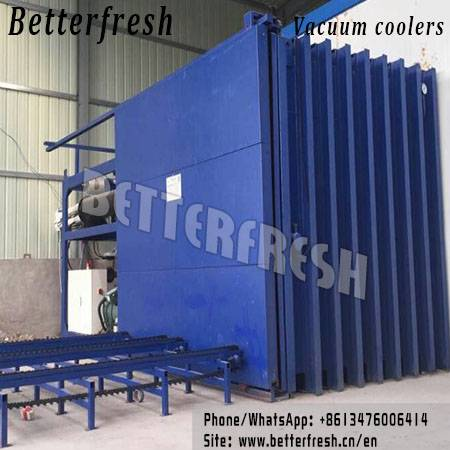 Betterfresh Leaf Vegetable Lettuce Celery Vacuum Cooling Process Pressure Cooling for Cooling Fresh