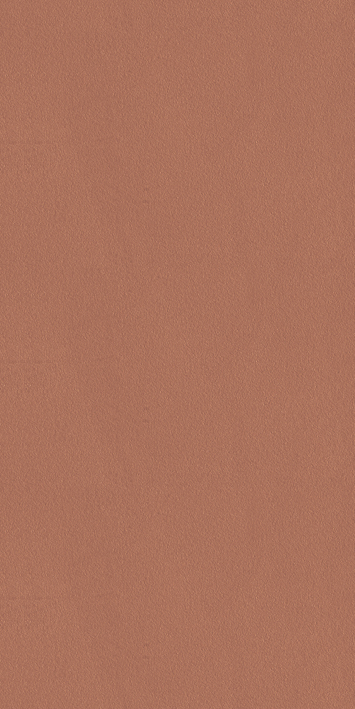 60012004.8 Thin Tile/Red Brown/Wall&Floor Tile