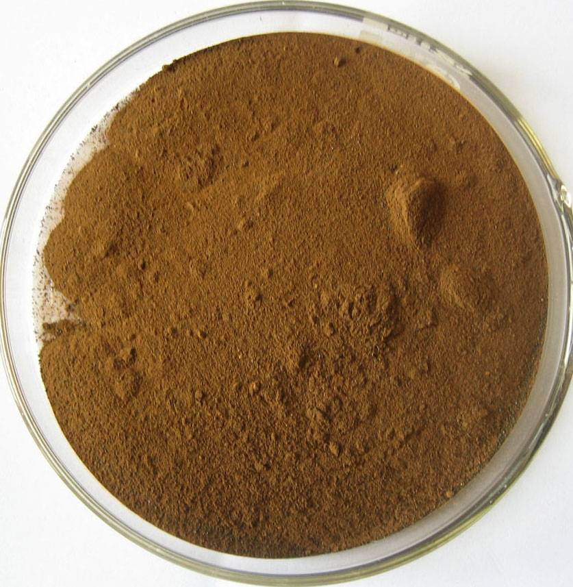Green Tea Powder Extract