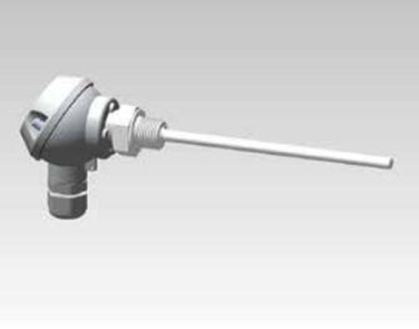 Form J screw-in thermocouple(TM2402)