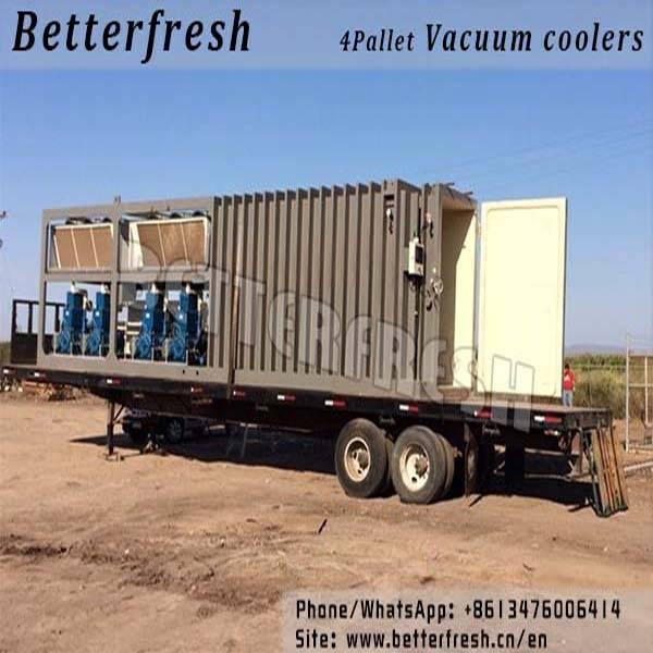 Dongguan Betterfresh rapid cooling pre coolers Vacuum coolers for vegetables Cauliflower Kohlrabi Cr