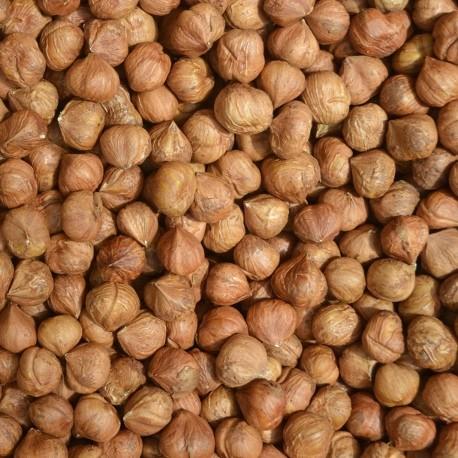 best quality grade hazelnuts whole sale price