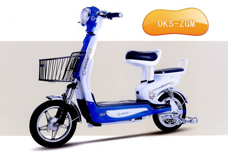 Electric Bicycle (OKS-ZGM)