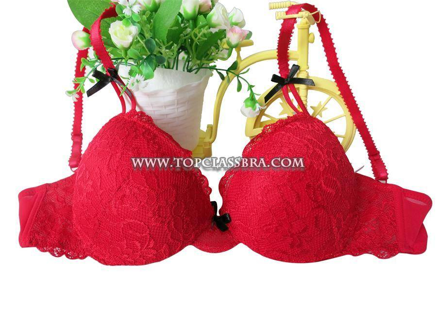 2016 Latest Product Elegant sexy push up bra with embroidery (EPB305)