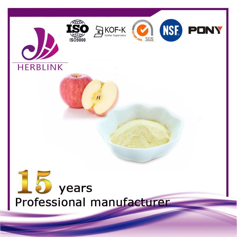 Apple Fruit Powder juice concentrate powder