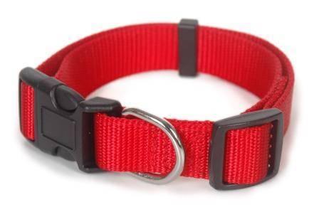 Quality nylon pet collar & leash
