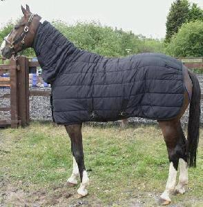 100% Cotton, Cotton Rug, Horse Rug (CB-31)