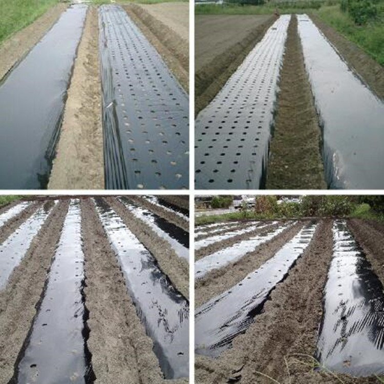 100%biodegradable agricultural mulching film