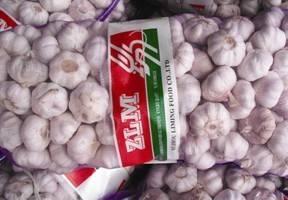 super good garlic