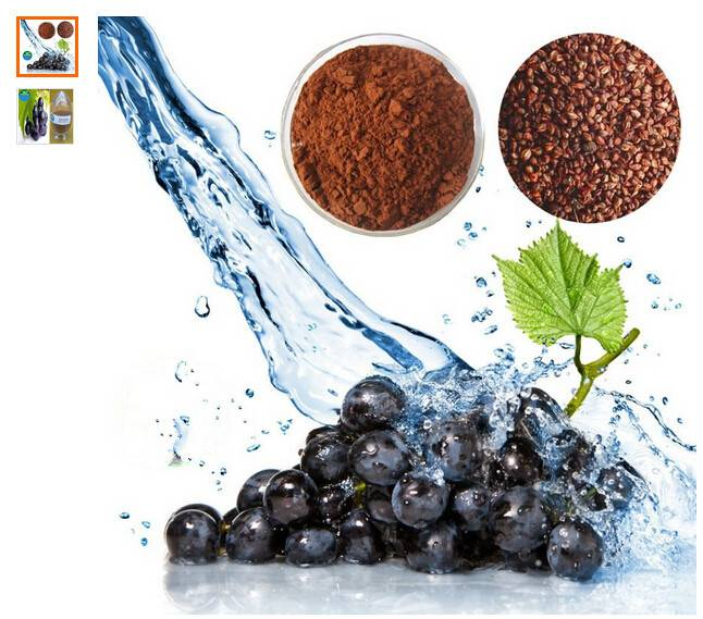 natural proanthocyanidin powder 95% OPC grape seed extract