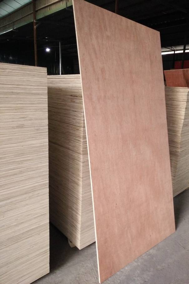 Vietnam high quality Plywood from factory
