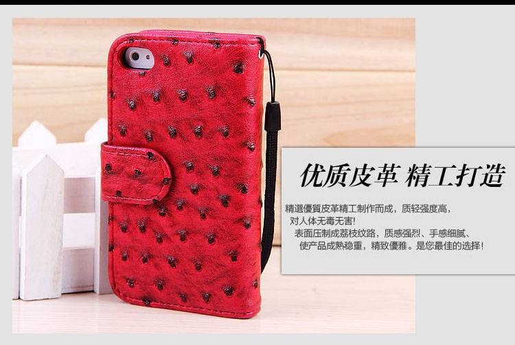 2013 Promotional case for iphone