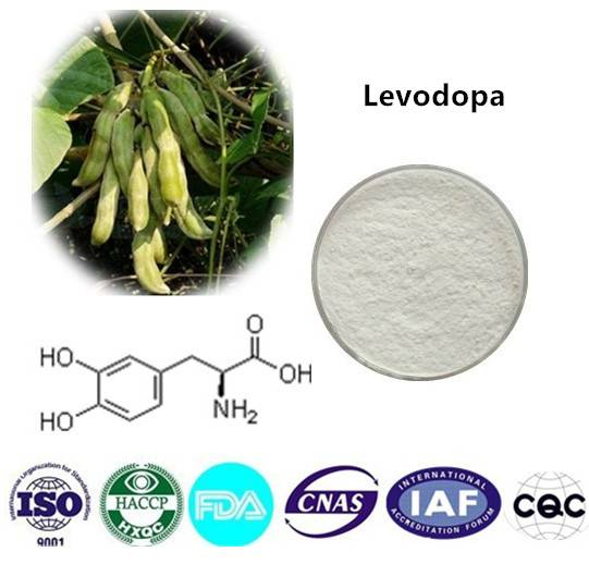 Levodopa  99% HPLC CAS NO:59-92-7 1kg/bag