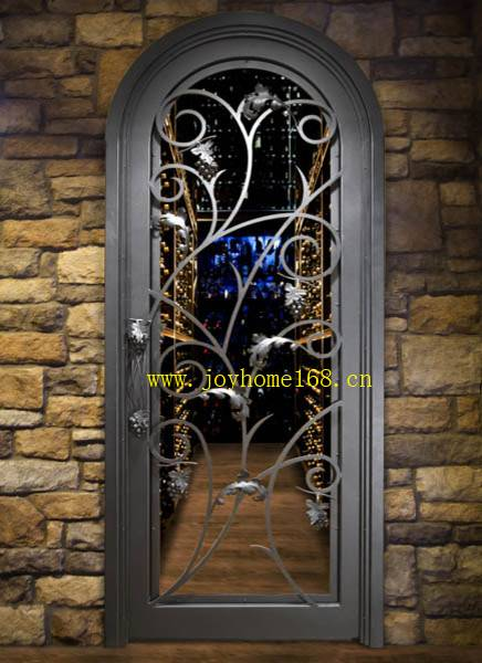 Grape vines style wrought iron single entry/interior door designs