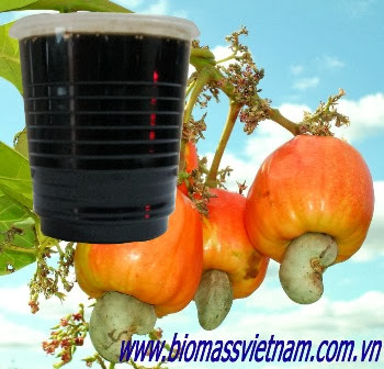 Cashew nut shell liquid best price