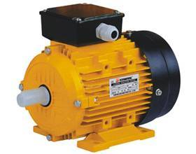 Electric  motor  (Y2 series three-phase induction motor)