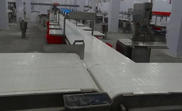Cutting And Deboning machine