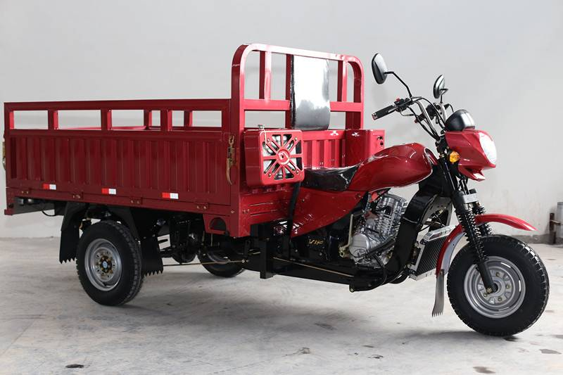 2016 hot selling cargo tricycle in Africa