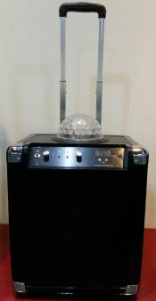 8INCH PA SYSTEM SPEAKER WITH CRYSTAL BALL LIGHT