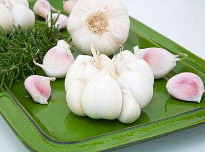 Viet Nam Fresh Garlic