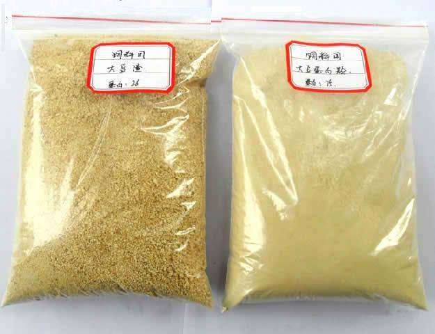 Soybean Meal 45% Protein