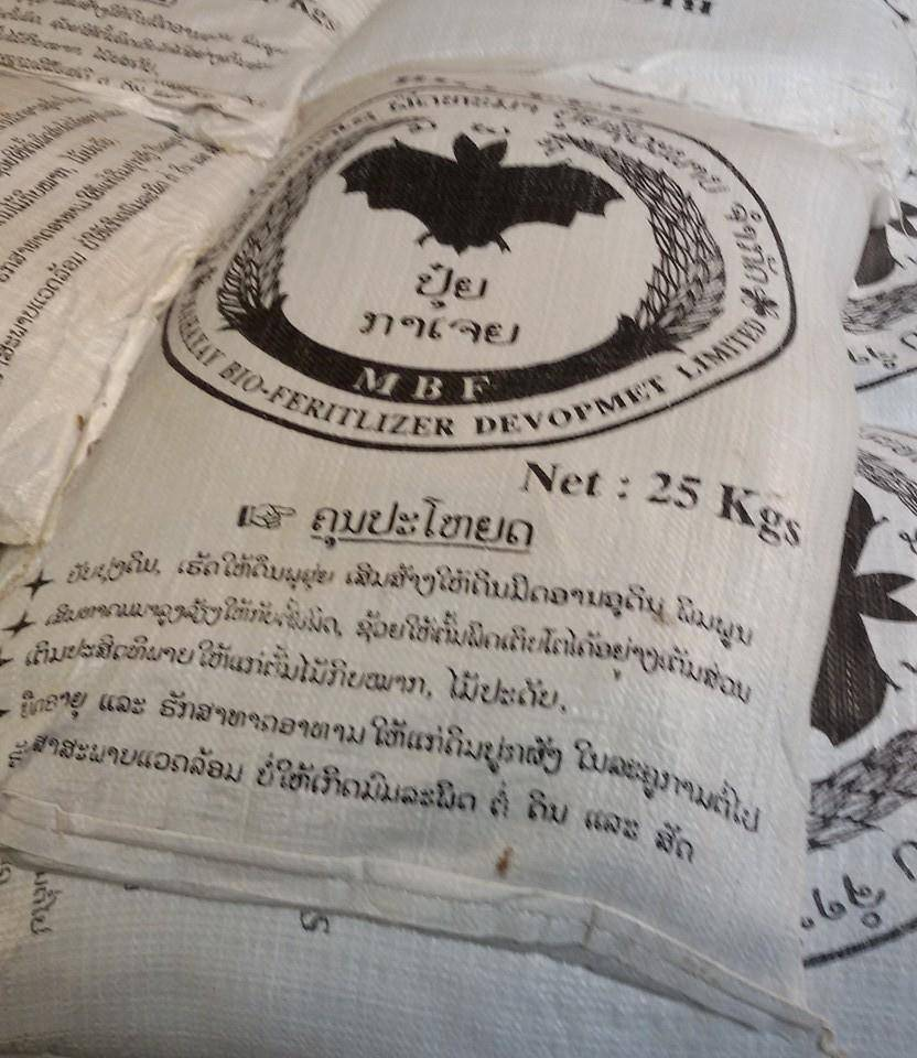 guano bat guano bat droppings organic manure guano definition bat feces(Bat guano 100% (50kg,25kg))