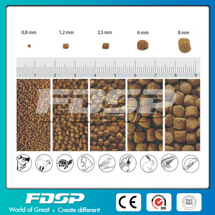 High Grade 4-5T/H Output Chicken Feed Production Line
