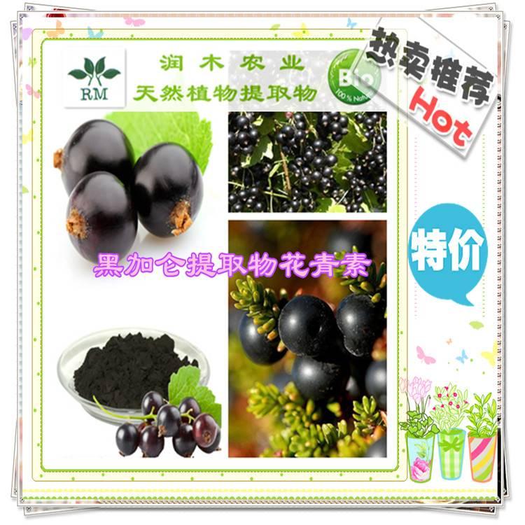 Black currant P.E