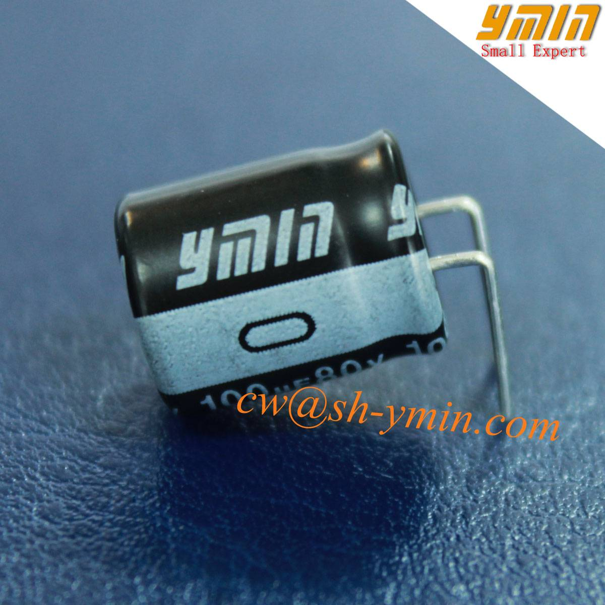 105°C 6000 Hours 100uF 80V Capacitor Radial Electrolytic Capacitor for LED Light and Energy Saving L