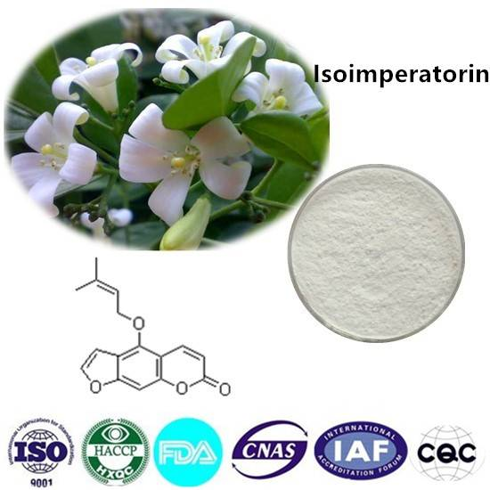Isoimperatorin  98% HPLC CAS NO:482-45-1 10g/bag