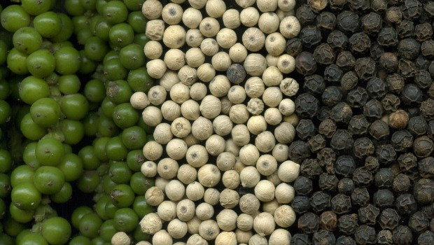 Good Quality Black Pepper and White pepper