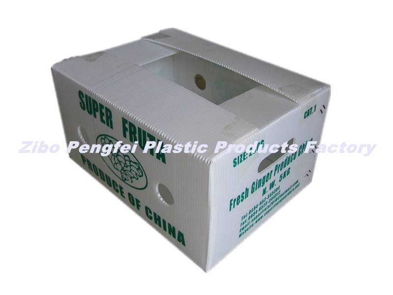 Water Proof Vegetable Packing Box Made of PP Corrugated Sheet