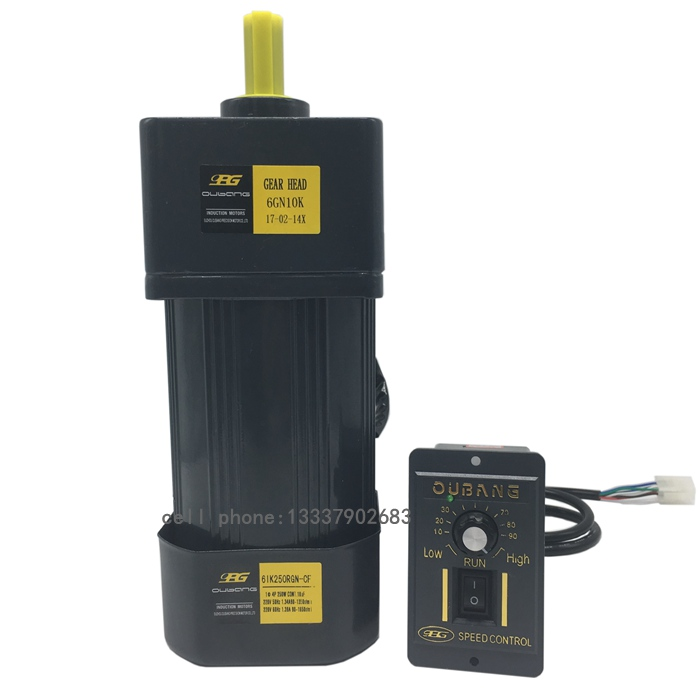 250W 220V AC Gear Motor, Electric Motor Variable Speed Controller, Reduction Ratio 1: 10
