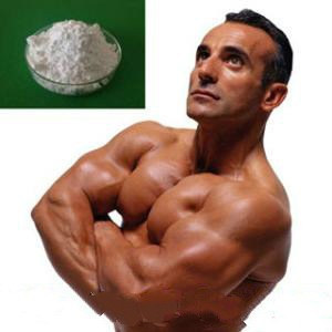 Testosterone enanthate anabolic steroids