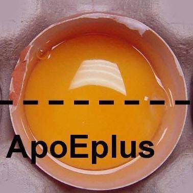 Beta-apo-8-carotenoic acid ethyl ester