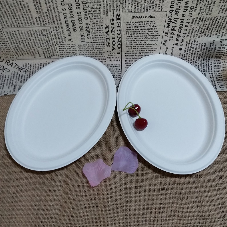 SGS Disposable Bagasse Oval Plate,Biodegradable Dinnerware Set