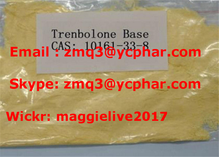 Anabolic Steroids 10161-33-8 Trenbolone Enanthate Base for Muscle Building