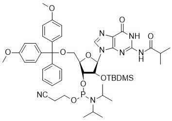 Ibu-rG phosphoramidite