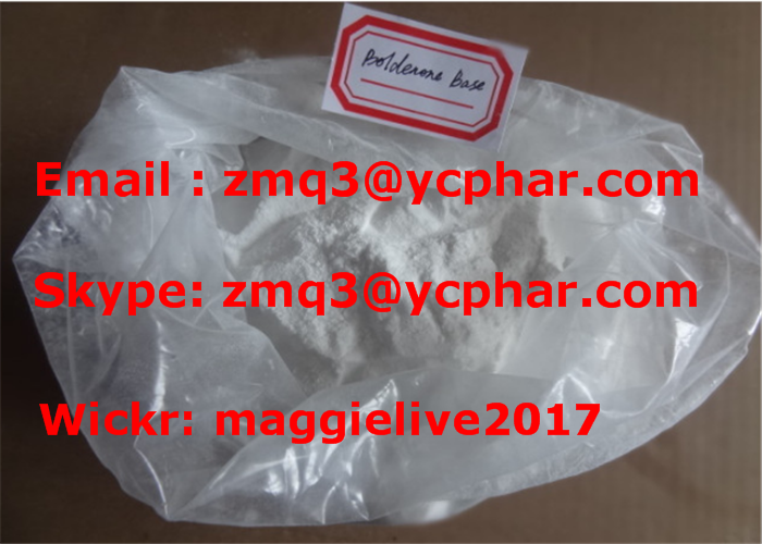 Boldenone base Bold 846-48-0 veterinary muscle bodybuilding anabolic androgen injectable oral steroi