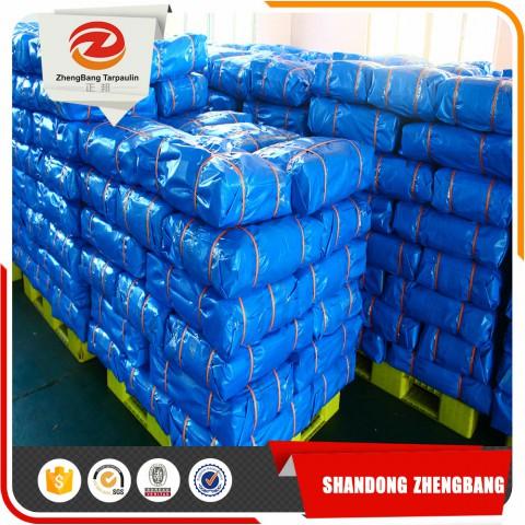 Blue PE tarpaulin factory   PE tarpaulin sheet