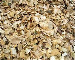 WOOD CHIP COMPETITIVE PRICE