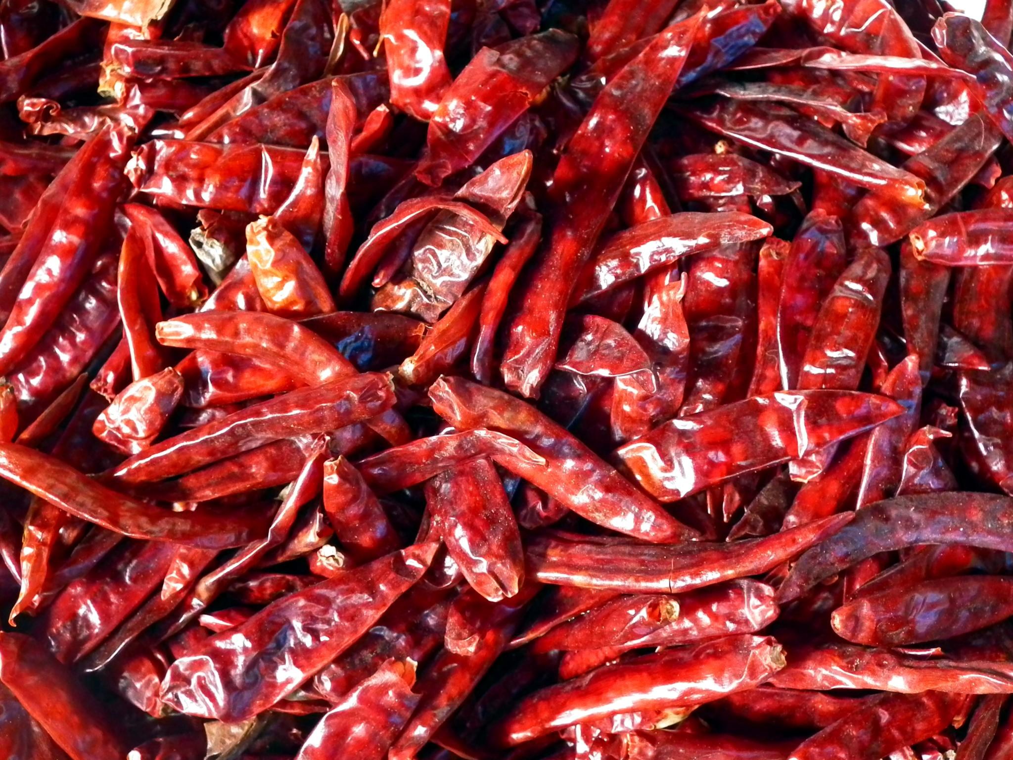 DRY RED CHILIES